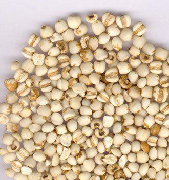 吃薏米可以排毒