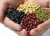 吃红豆减肥也能塑造完美身体曲线