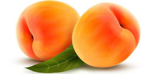 水果与体质的10大养生巧搭配(2)