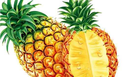 水果与体质的10大养生巧搭配(6)