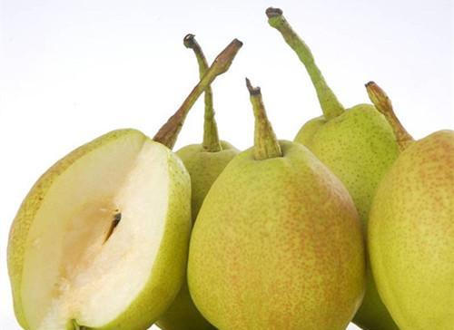 秋季吃梨正当时,十种秋梨各不同(1)