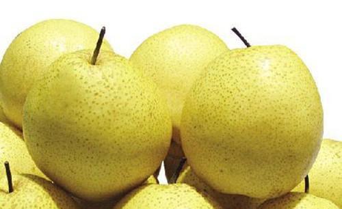 秋季吃梨正当时,十种秋梨各不同(4)