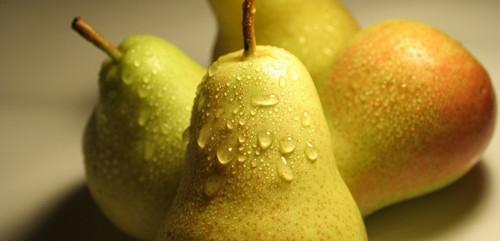 秋季吃梨正当时,十种秋梨各不同(5)