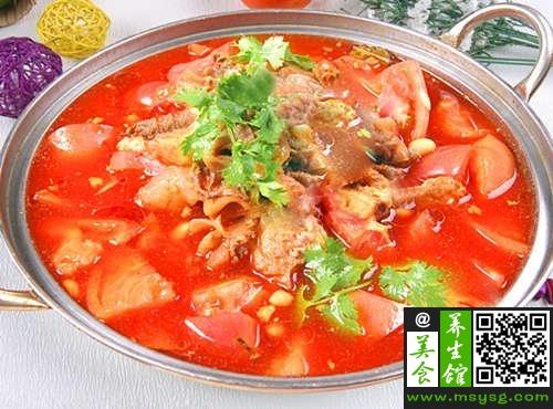 要防晒多吃西红柿 DIY西红柿牛腩汤(3)