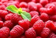 女性常吃4种浆果心脏最有益