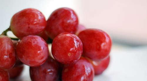 糖尿病人能吃红提子吗