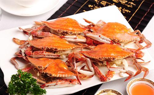 梭子蟹什么时候最肥