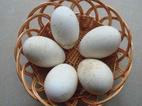 鹅蛋孕妇可以吃吗