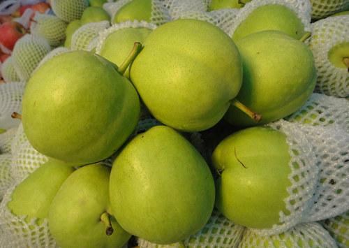 孕妇能吃早酥梨吗