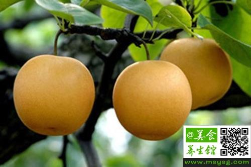 孕妇能吃酸梨吗