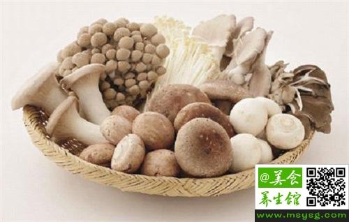 白玉菇的营养价值