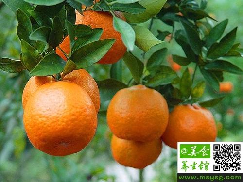 空腹吃柑桔好吗