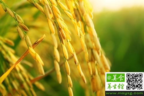 稻谷能生吃吗