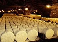 奶酪是法国美食的象征