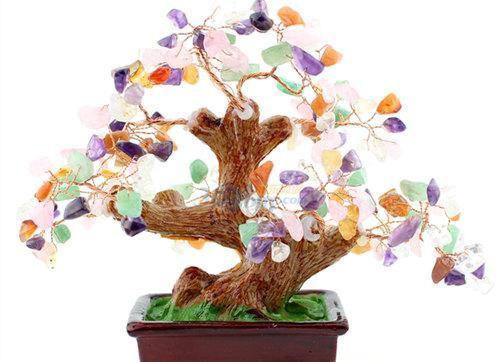 招财树的摆放哪让 你马上有钱(3)
