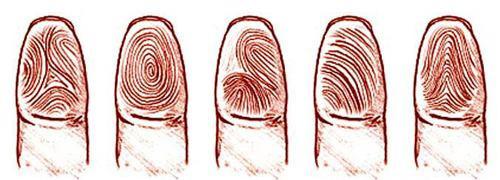 手指螺纹密码?你是富贵命吗?(1)