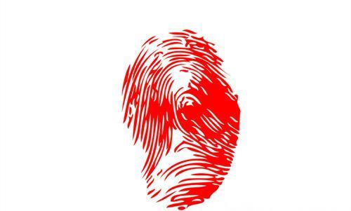 手指螺纹密码?你是富贵命吗?(2)