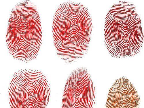 手指螺纹密码?你是富贵命吗?(6)