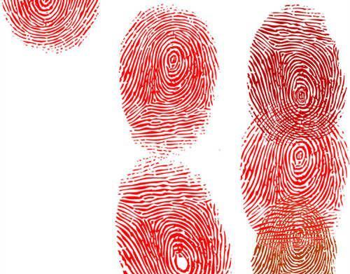 手指螺纹密码?你是富贵命吗?(7)